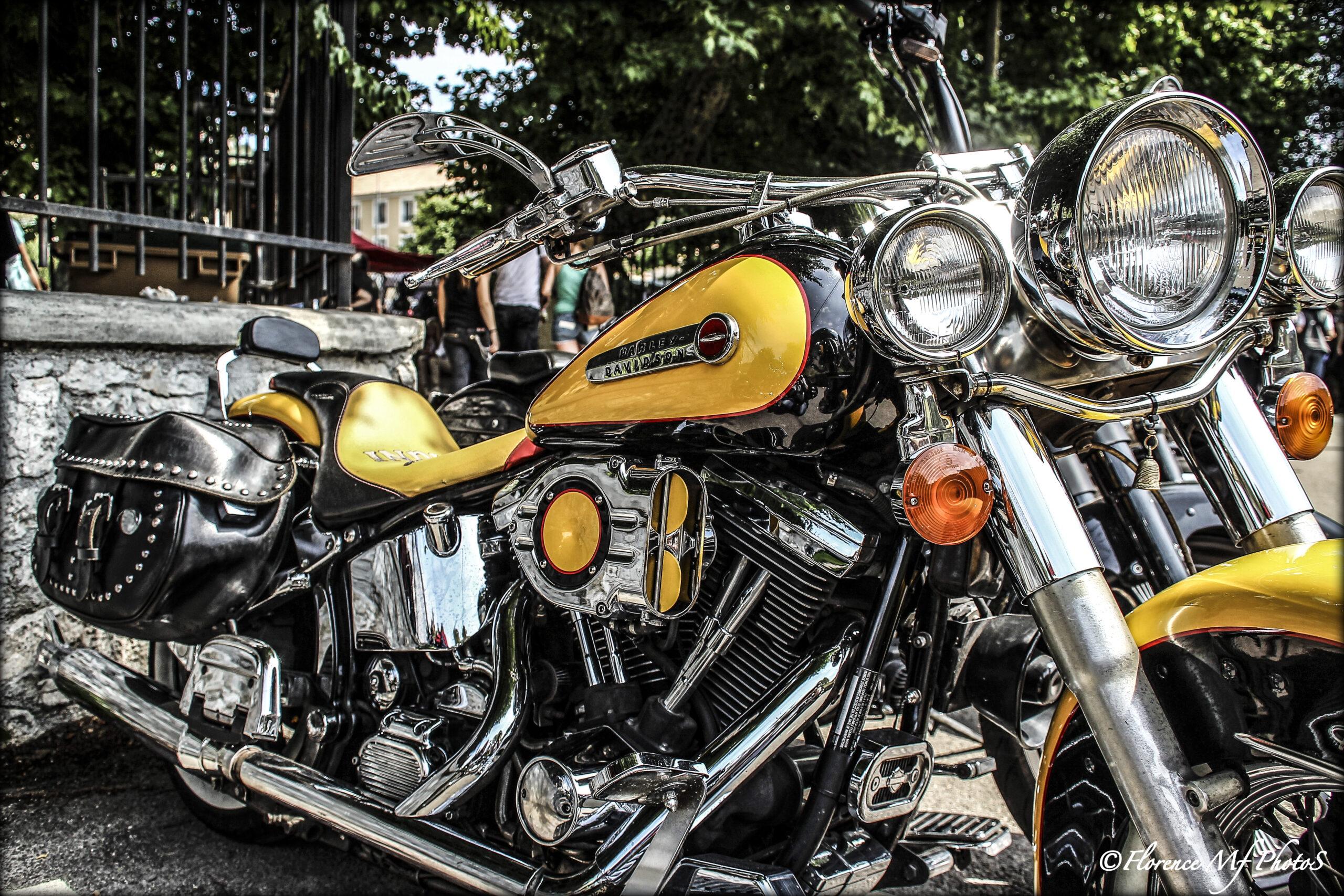 MOTO_Cars & Bikes style